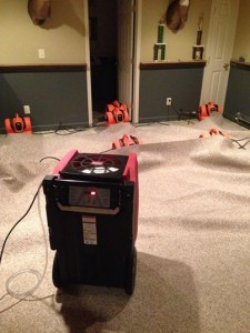 Water Damage Restoration In Progress For Den